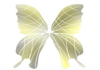 【ClipStudioPaint】左右対称のイラストを描く方法!